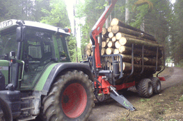 Holztransport mit Traktor